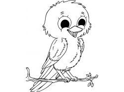 Распечатать бесплатно для детей картинки птиц и название их