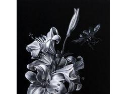 Красивые черно белые картинки с машинами