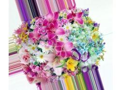 Посмотреть картинки и фото самых красивых цветов в мире 3