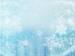 Картинки снежинок красивые фото