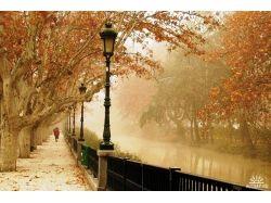 Осень фото парк