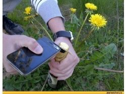 Бутылка пива фото