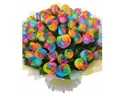 Скачать бесплатно картинки самые красивые необычные цветы