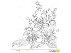 Графика картинки цветы
