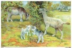 Картинки для детей коза с козлятами