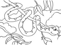 Раскраски животных для детей