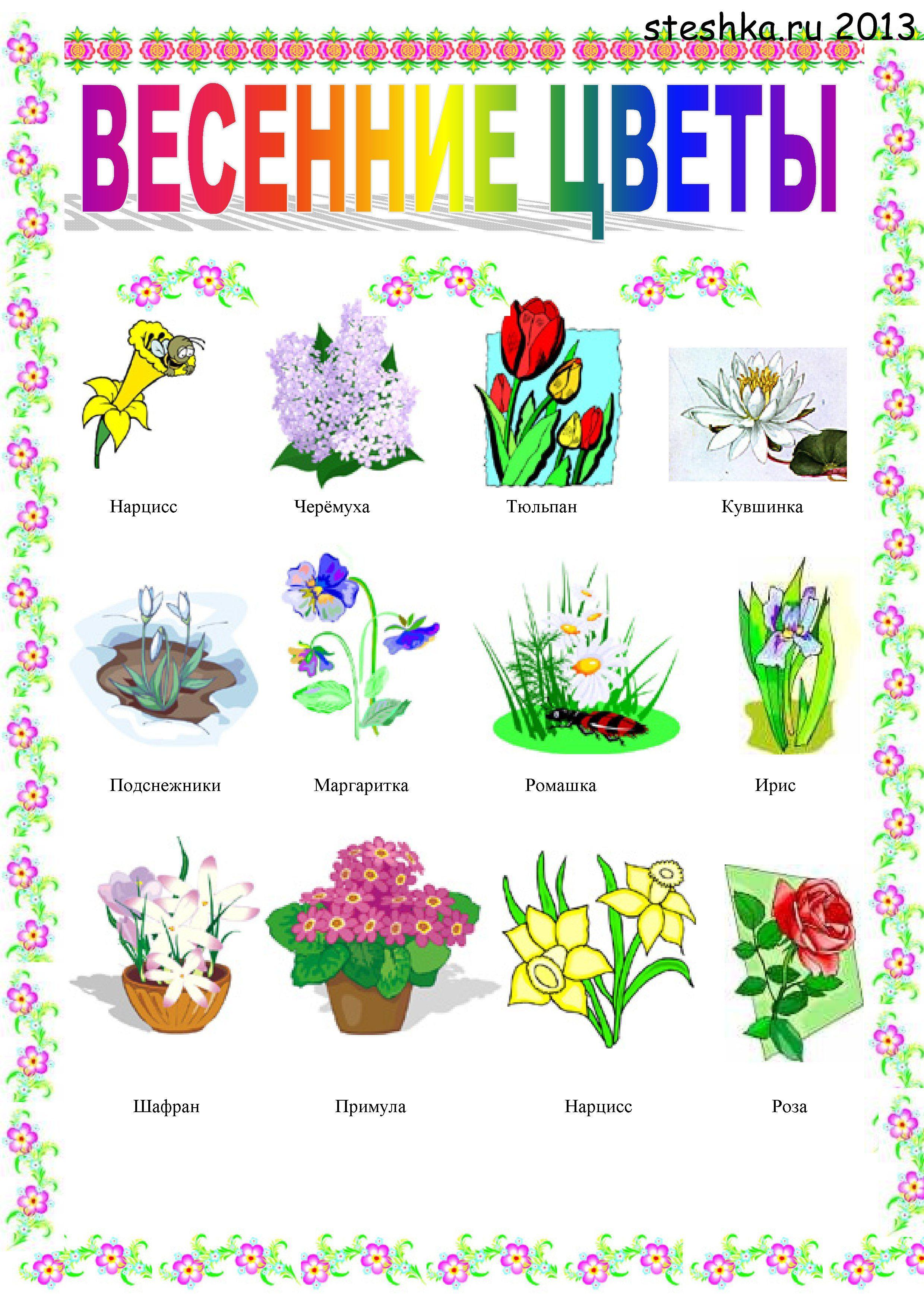 Картинки горох для детей
