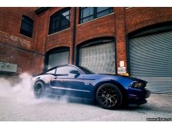 Машины фото форд