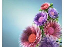 Красивые букеты тюльпанов картинки