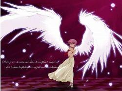 Картинки аниме ангел