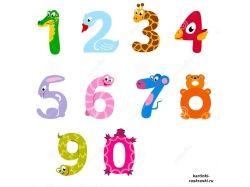 Королева математики картинки для детей