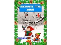 Картинки птиц для детей детского сада покормите птиц зимой