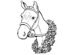 Картинки цветная голова лошади для детей