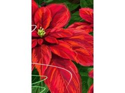 Осень картинки на айфон
