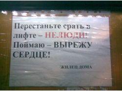 Фото приколы умом россию не понять