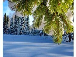 Картинки зима бесплатно скачать