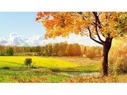 Осень фоновые рисунки 2