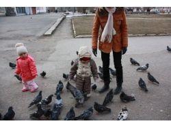 Фото дети и голуби 9