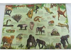 Купить животных 6