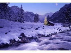 Новогодняя природа картинки 7