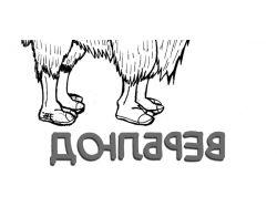 Верблюд - раскраски для детей 7