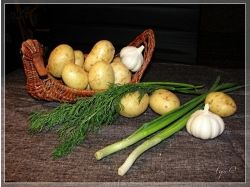 Натюрморт фрукты и овощи фото 4