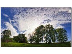 Природа картинки большого формата 7