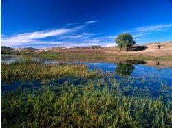 Фото вода и небо 7