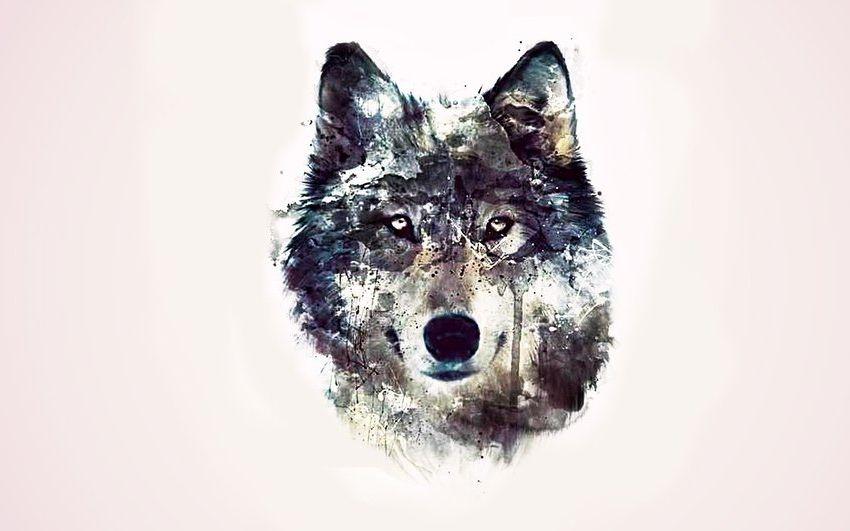 обои на рабочий стол абстракция волк № 639759 без смс
