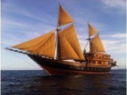 Корабли фото парусные яхты 7