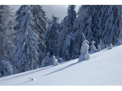 Креативные зимние картинки 7