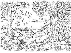 Осень картинки раскраски 7