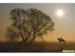 Природа картинки пейзажи 7