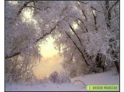 Сказочная природа картинки 7