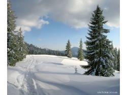 Фото зима в карпатах 7