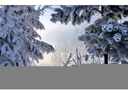Открытки зима природа 7