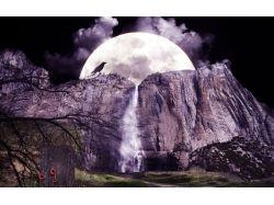 Ночь природа картинки 7