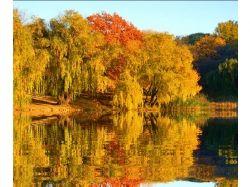 Картинки осень красивые для детей 7