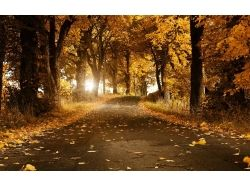 Природа картинки красивые 1024 600 7