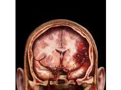 Медицина рисунки фотографии 6