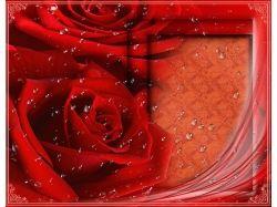 Любовь в открытках 7