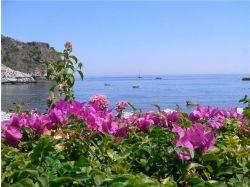 Широкоформатные обои цветущие сады 7