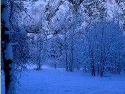 Зима природа картинки 7