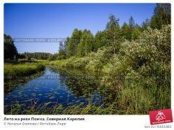 Фото лето на реке 7