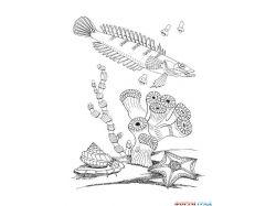 Подводный мир детские картинки 7