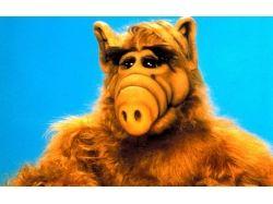 Alf демотиваторы 7