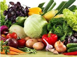 Овощи фрукты картинки 7