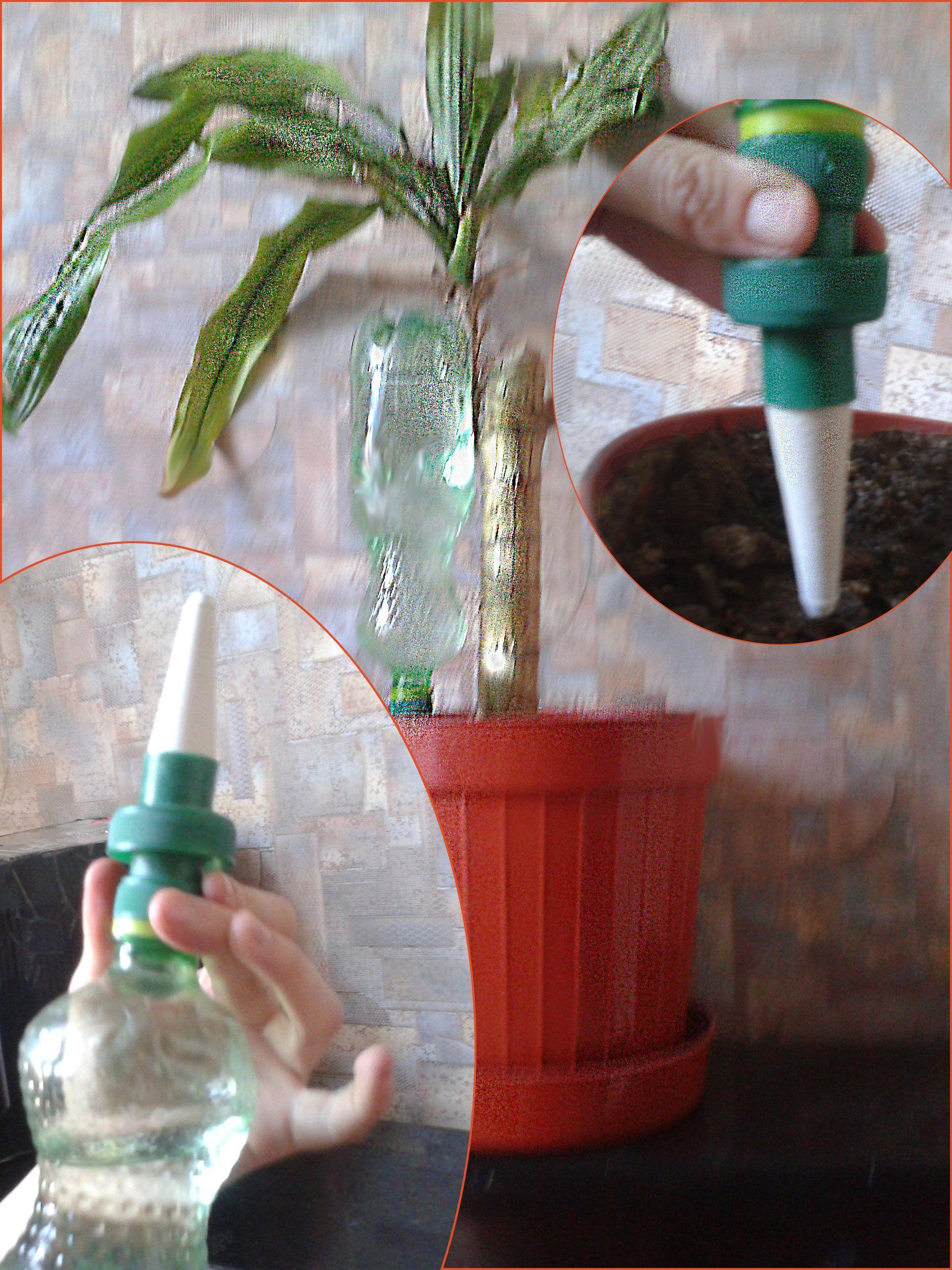 Автополив для вазонов