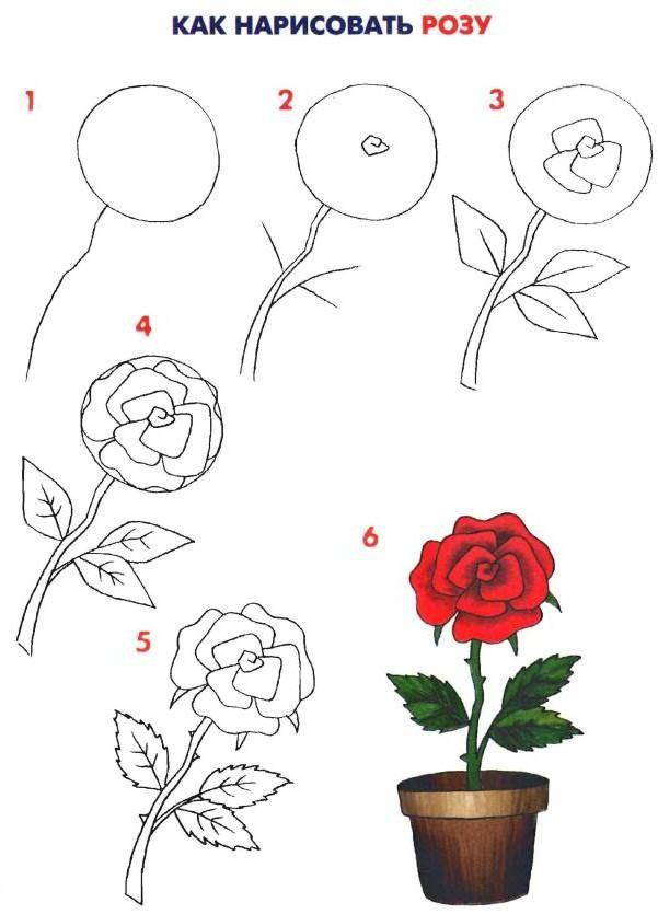 Роза рисунок красками поэтапно 4
