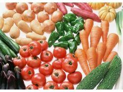 Картинка овощи в карзине для детей натюрморт 3
